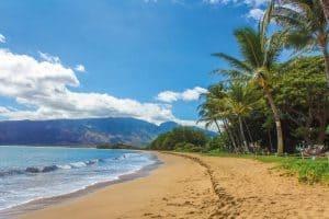 Custom private Maui island tours