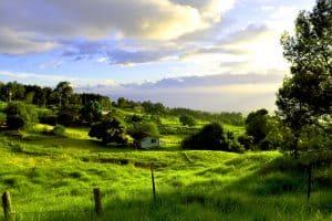 Maui upcountry island tours
